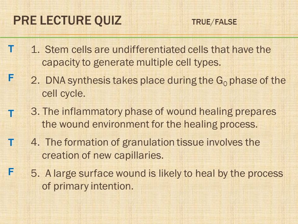 Pre Lecture Quiz True/False
