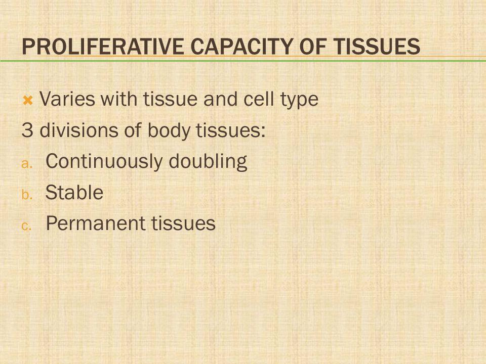 Proliferative Capacity of Tissues