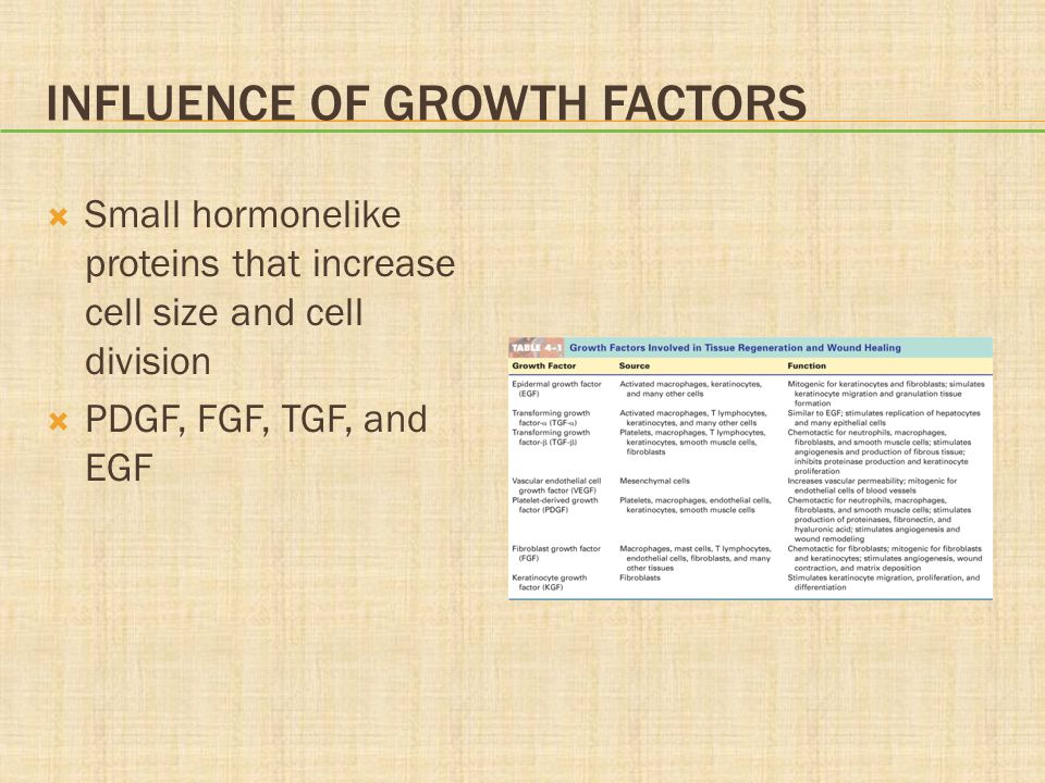 Influence of Growth Factors