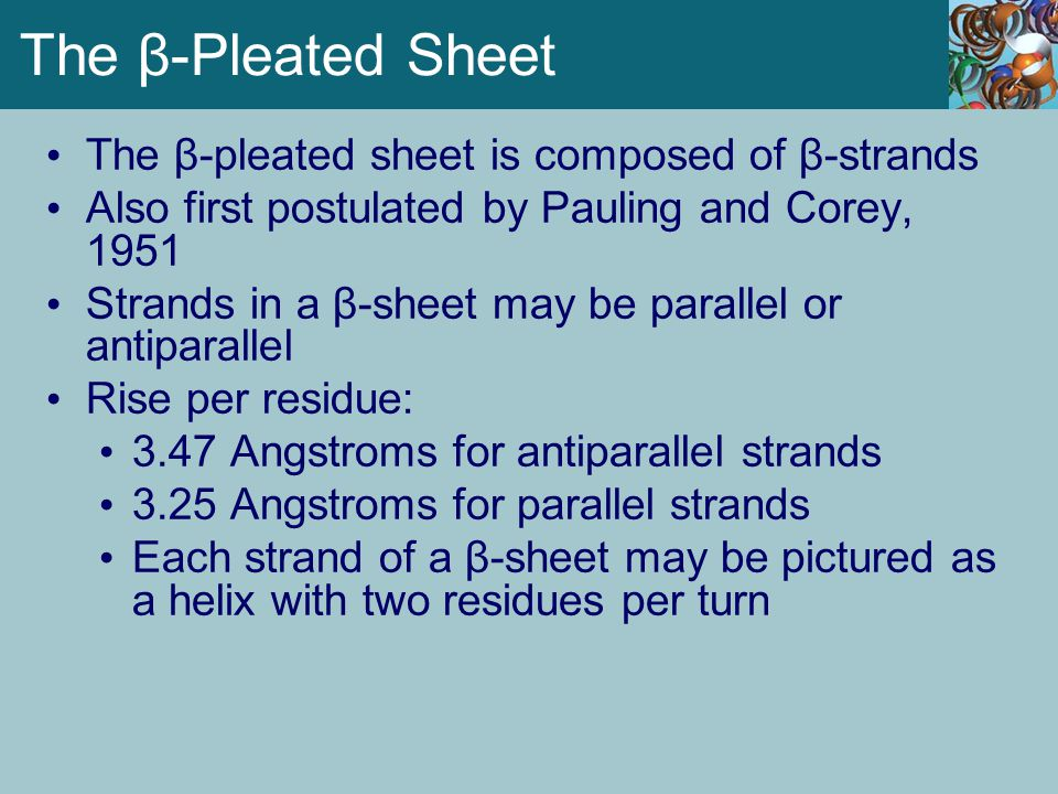 The β-Pleated Sheet The β-pleated sheet is composed of β-strands