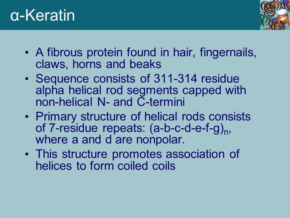 α-Keratin A fibrous protein found in hair, fingernails, claws, horns and beaks.
