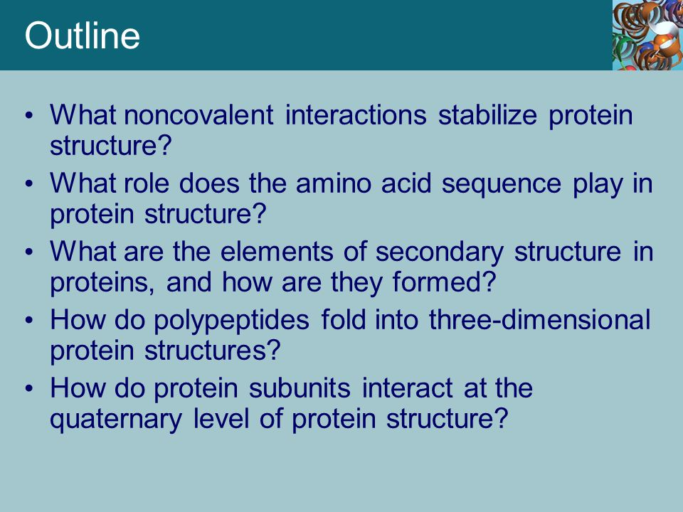Outline What noncovalent interactions stabilize protein structure