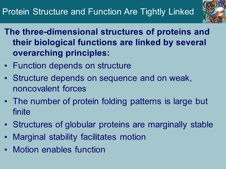 Protein Structure and Function Are Tightly Linked