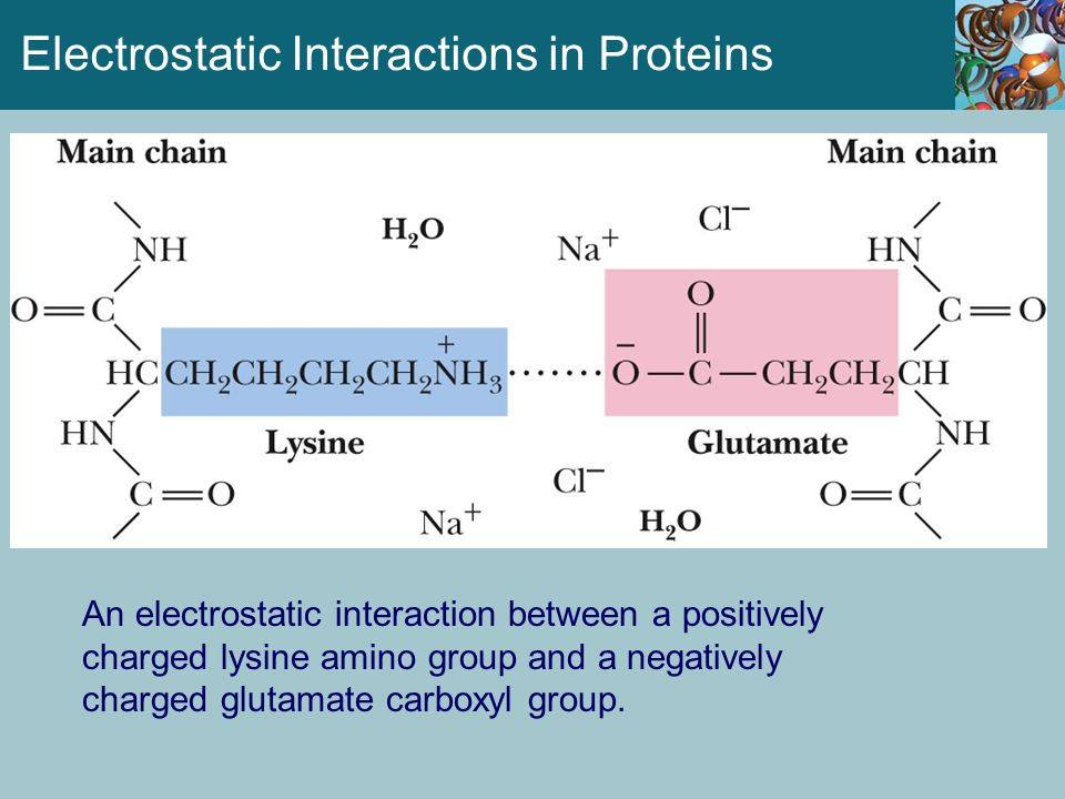 Electrostatic Interactions in Proteins