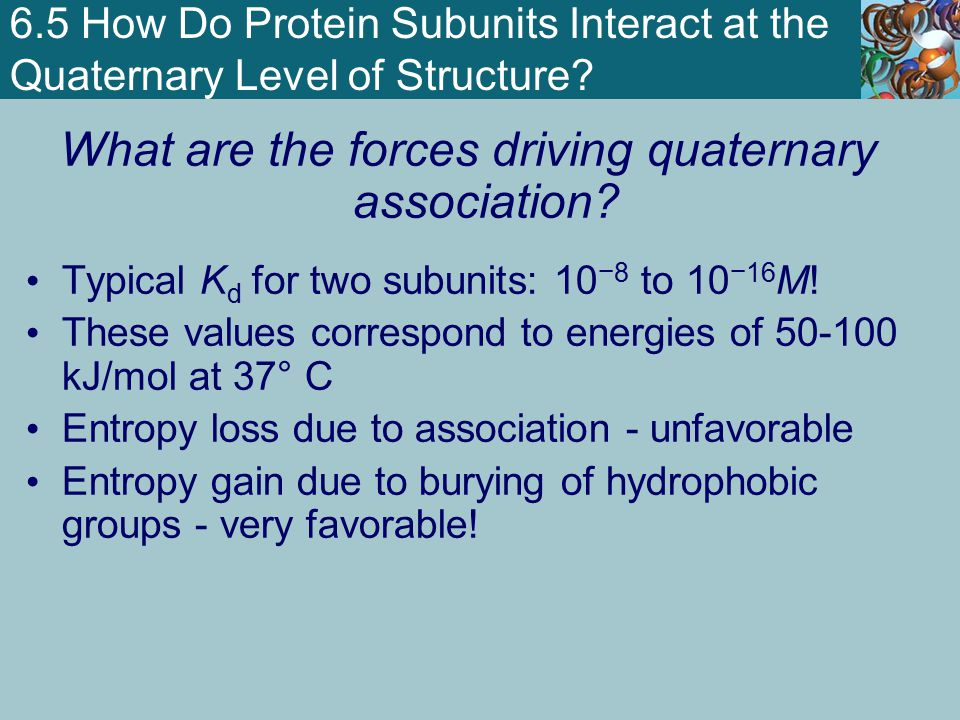What are the forces driving quaternary association