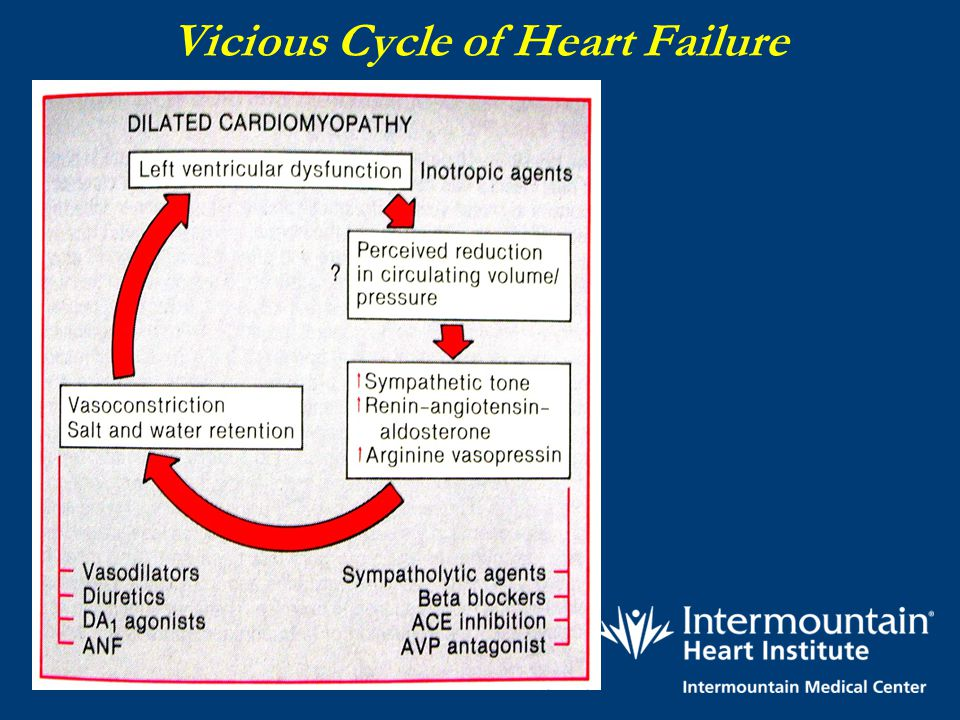 Vicious Cycle of Heart Failure
