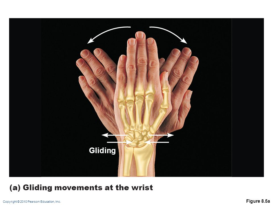 (a) Gliding movements at the wrist