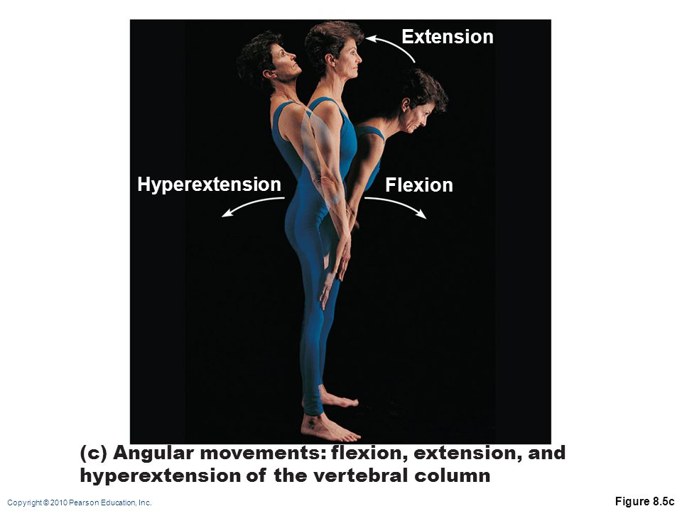 Extension Hyperextension Flexion