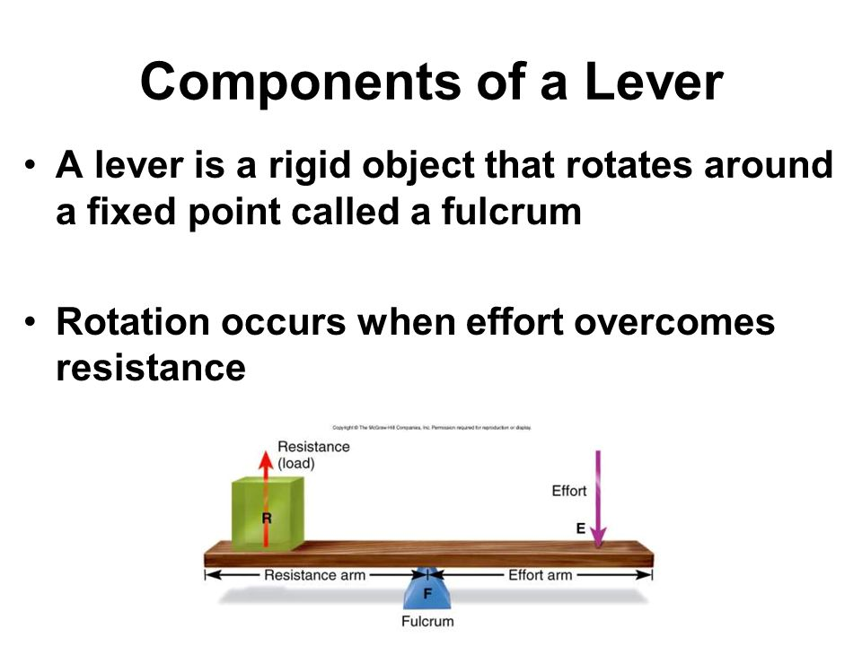Components of a Lever A lever is a rigid object that rotates around a fixed point called a fulcrum.