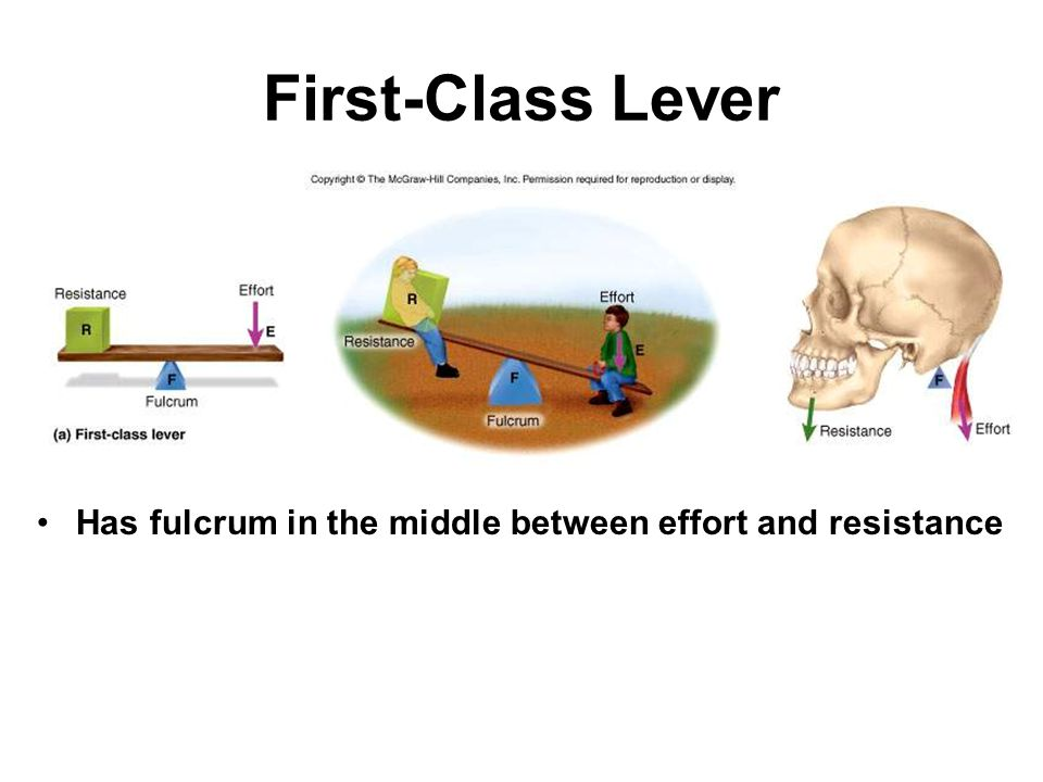 First-Class Lever Has fulcrum in the middle between effort and resistance