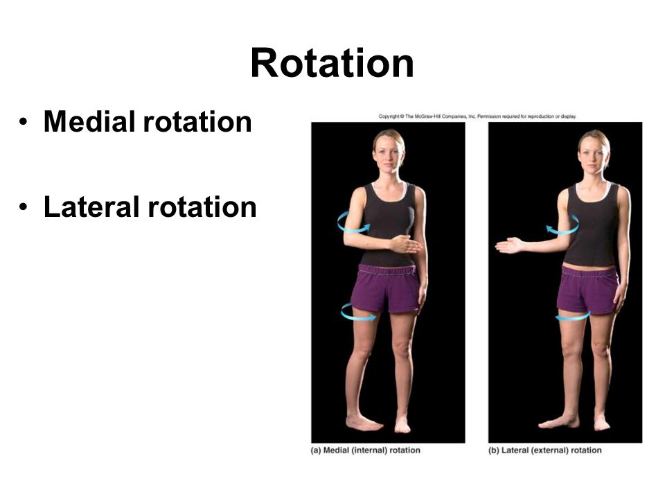 Rotation Medial rotation Lateral rotation