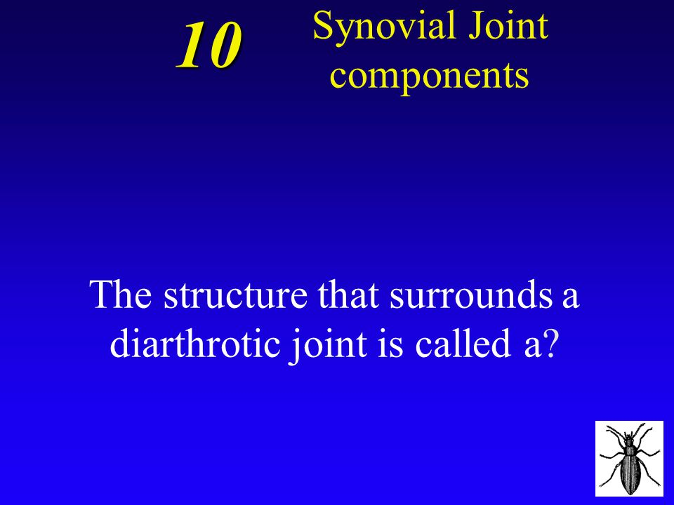The structure that surrounds a diarthrotic joint is called a