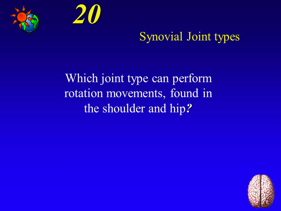 20 Synovial Joint types.