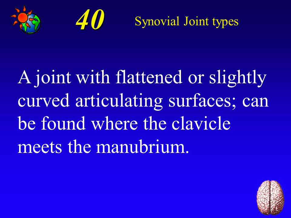 40 Synovial Joint types.