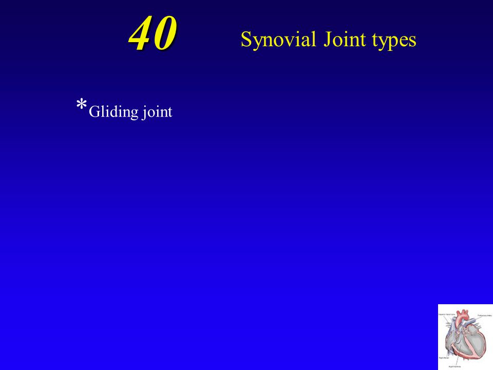 40 Synovial Joint types *Gliding joint