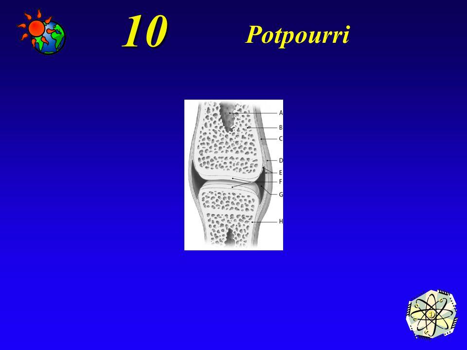 10 Potpourri