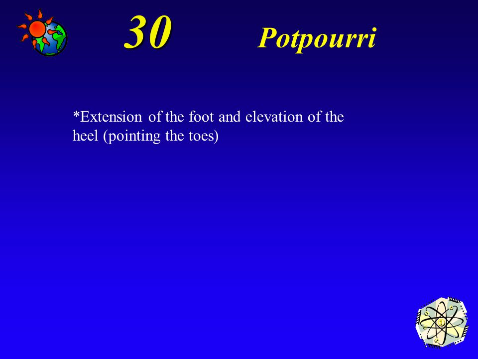 30 Potpourri *Extension of the foot and elevation of the heel (pointing the toes)