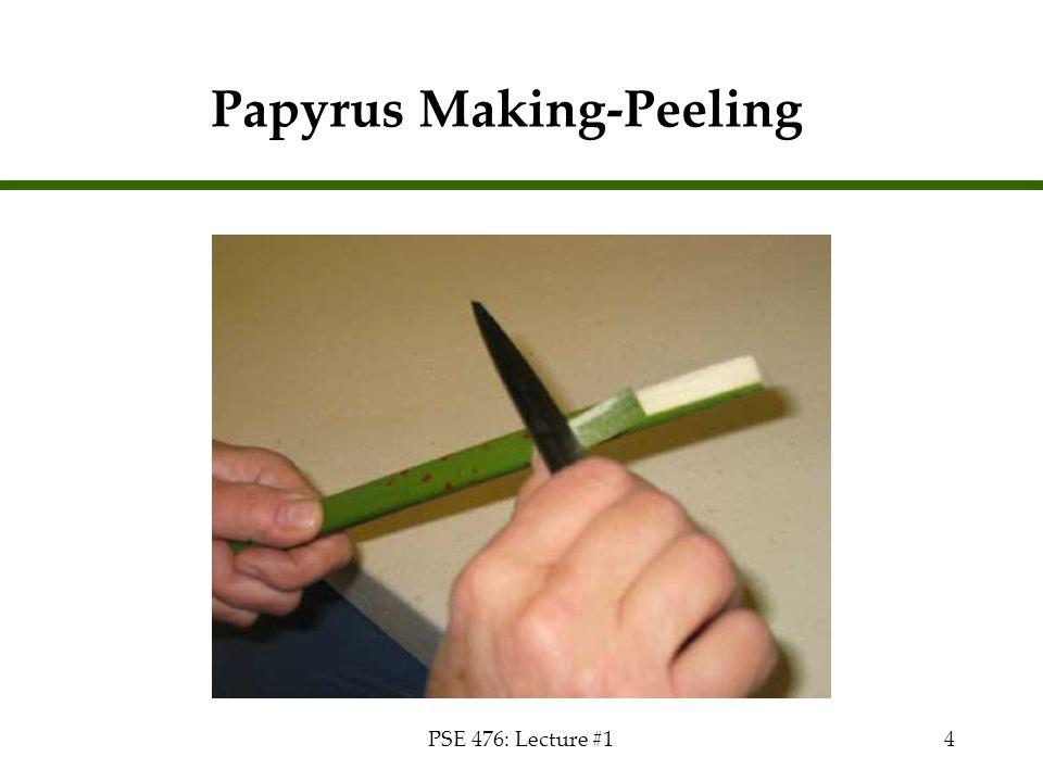 Papyrus Making-Peeling