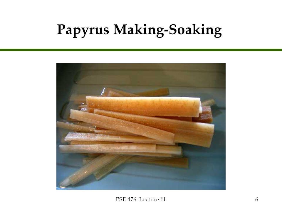 Papyrus Making-Soaking