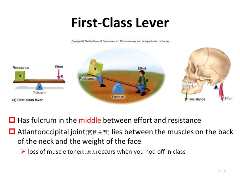 First-Class Lever Has fulcrum in the middle between effort and resistance.