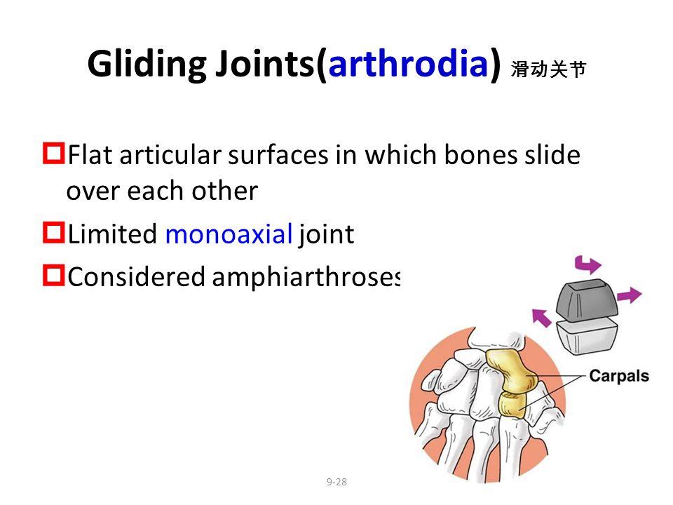 Gliding Joints(arthrodia) 滑动关节