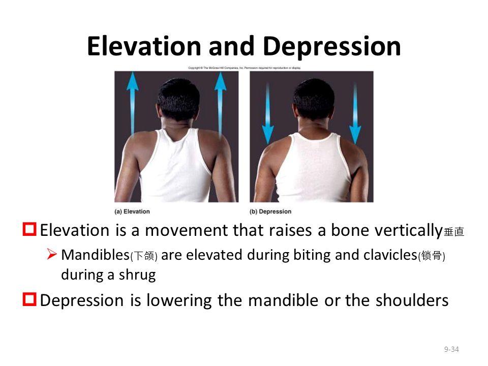 Elevation and Depression
