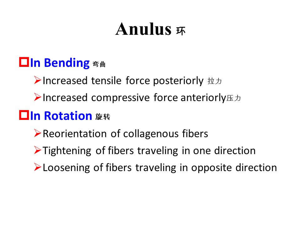Anulus 环 In Bending 弯曲 In Rotation 旋转