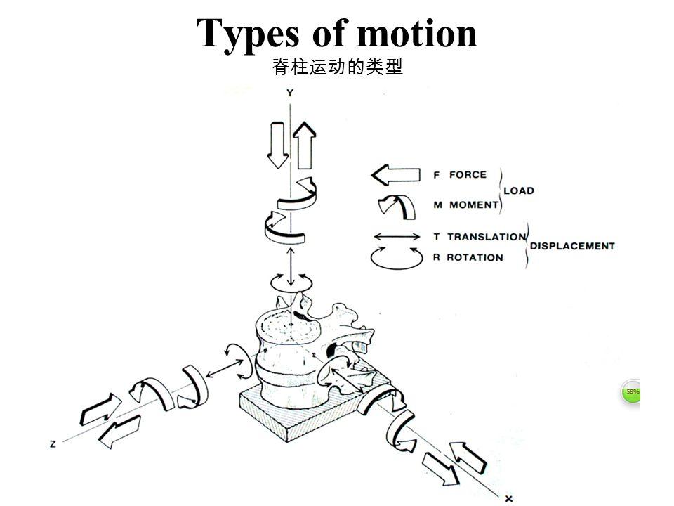 Types of motion 脊柱运动的类型
