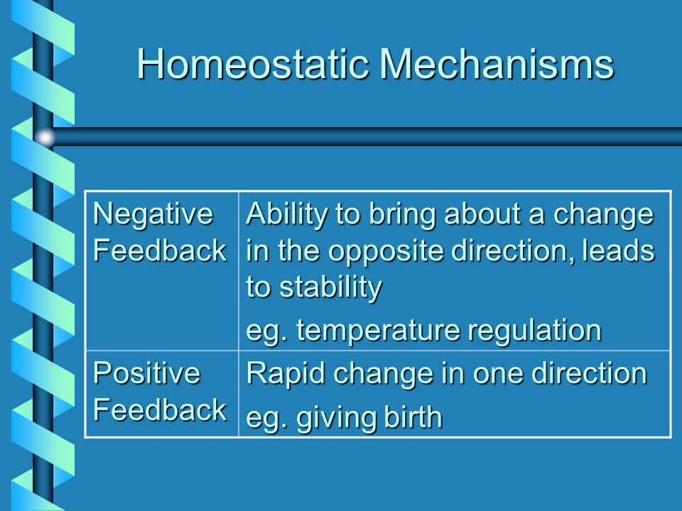 Homeostatic Mechanisms