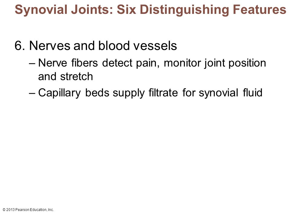 Synovial Joints: Six Distinguishing Features