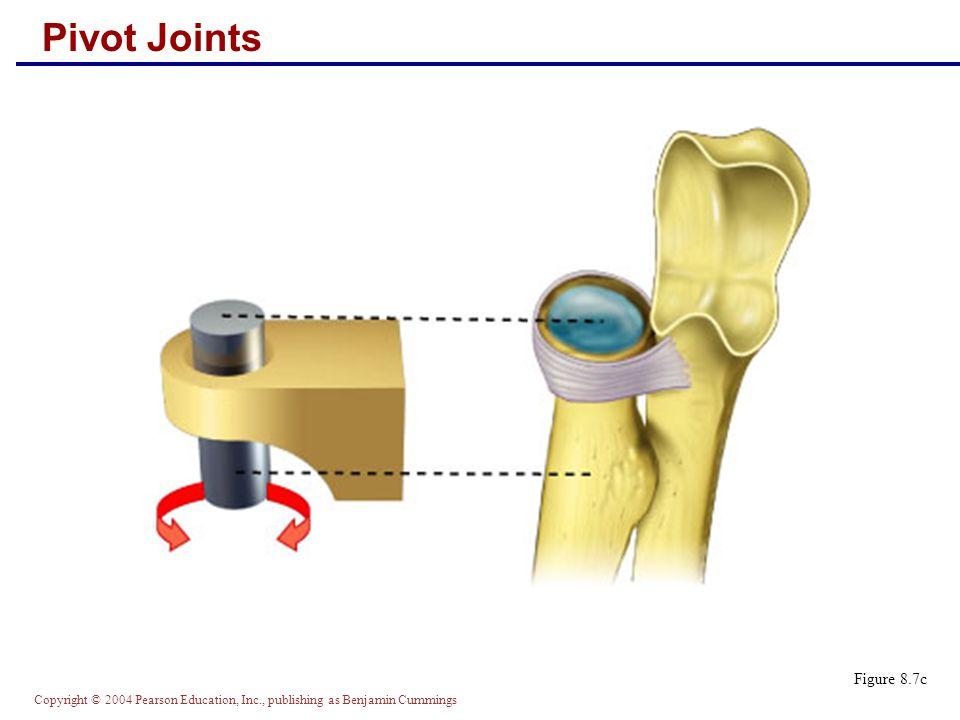 Pivot Joints Figure 8.7c