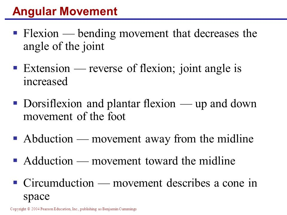 Flexion — bending movement that decreases the angle of the joint
