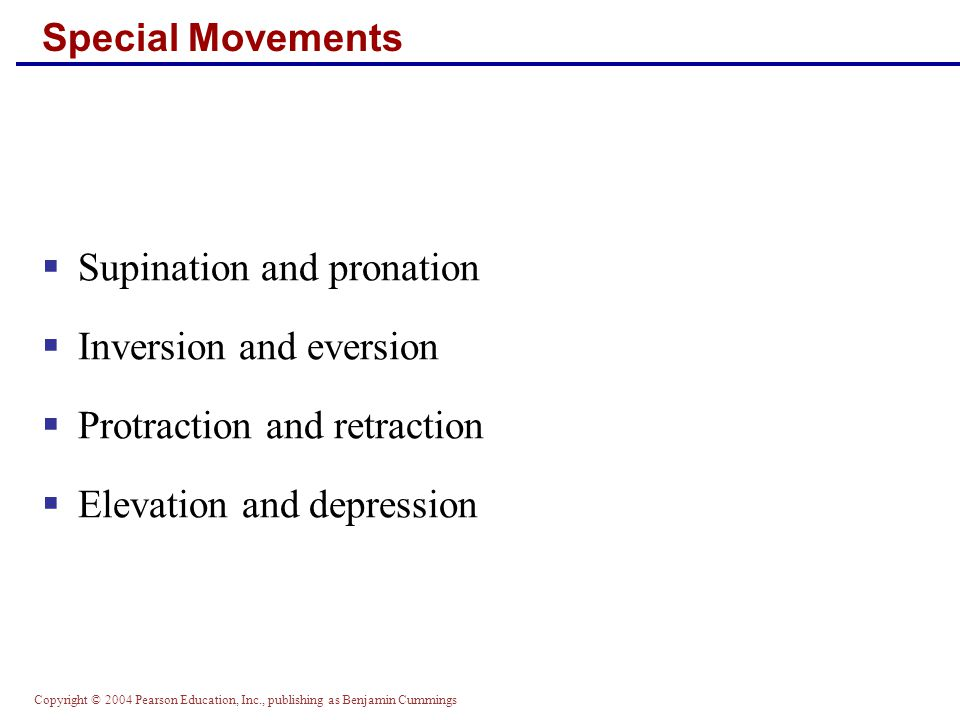 Supination and pronation Inversion and eversion