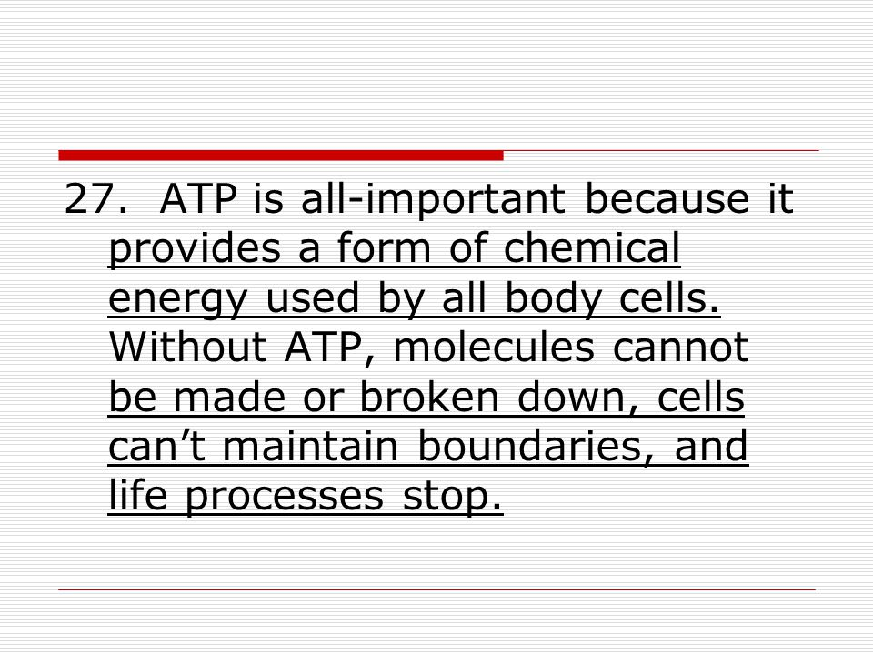 27. ATP is all-important because it provides a form of chemical energy used by all body cells.