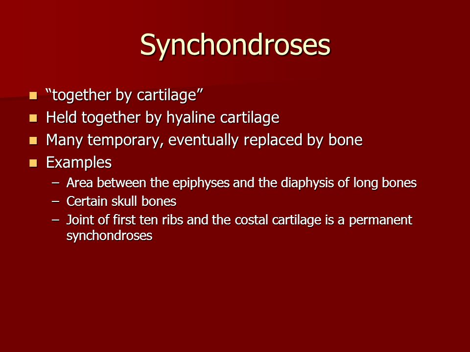Synchondroses together by cartilage