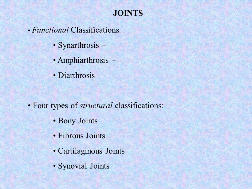 Four types of structural classifications: Bony Joints Fibrous Joints