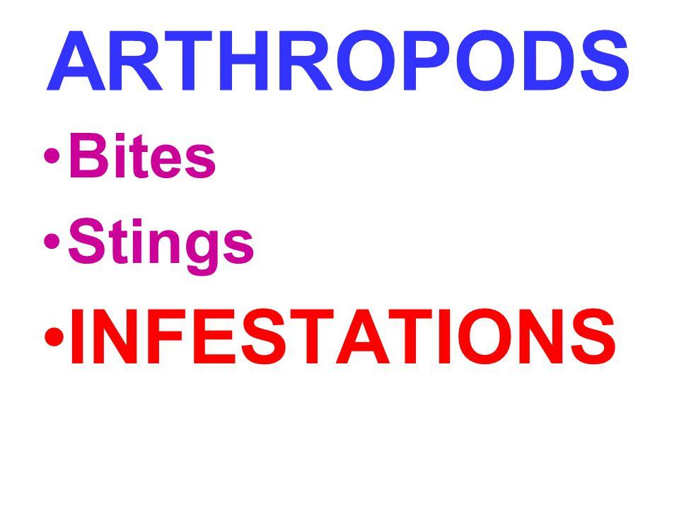 ARTHROPODS Bites Stings INFESTATIONS