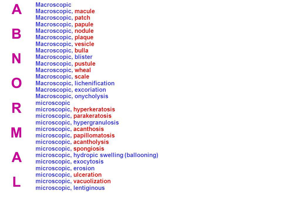A B N O R M L Macroscopic Macroscopic, macule Macroscopic, patch