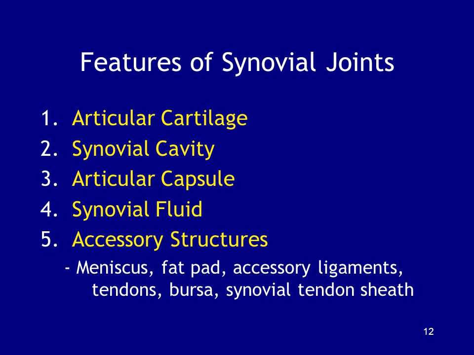 Features of Synovial Joints
