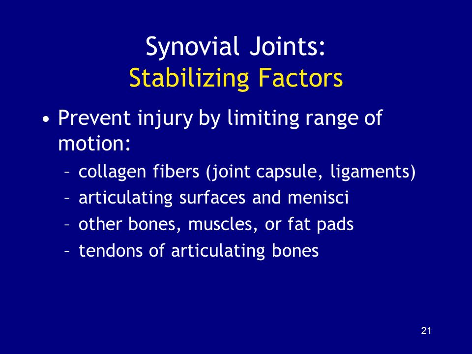 Synovial Joints: Stabilizing Factors