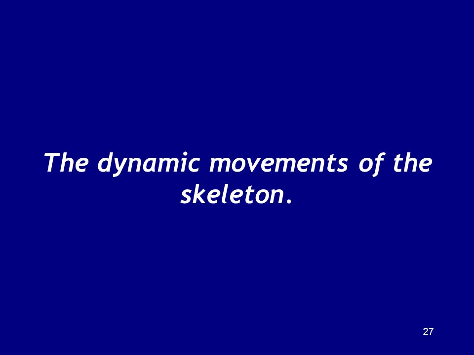 The dynamic movements of the skeleton.