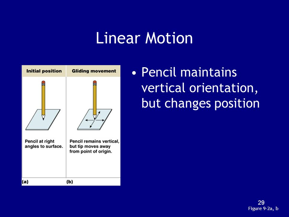 Linear Motion Pencil maintains vertical orientation, but changes position Figure 9–2a, b