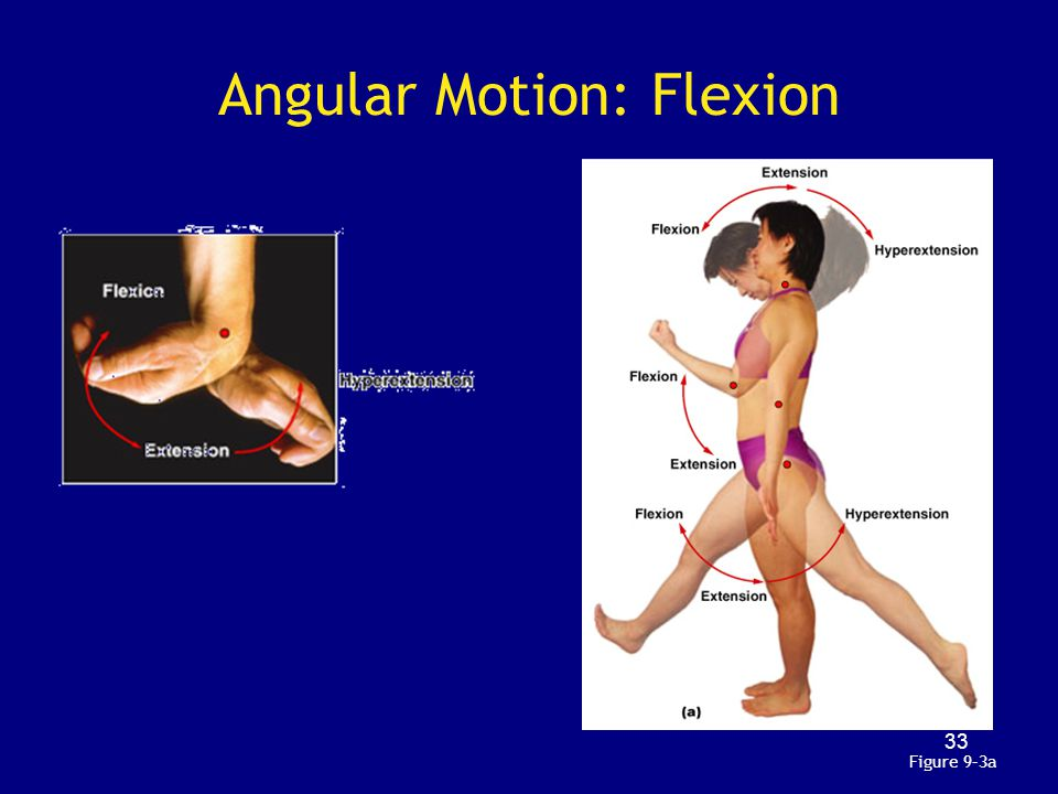 Angular Motion: Flexion