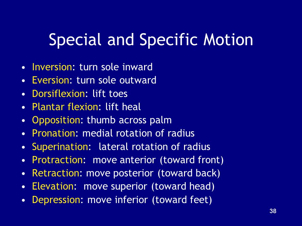 Special and Specific Motion