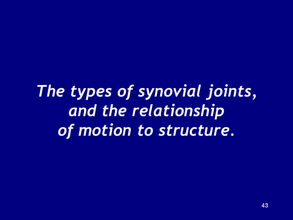 The types of synovial joints, and the relationship of motion to structure.