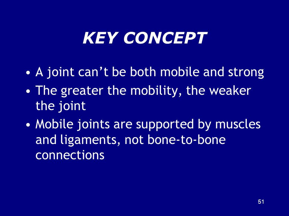 KEY CONCEPT A joint can't be both mobile and strong
