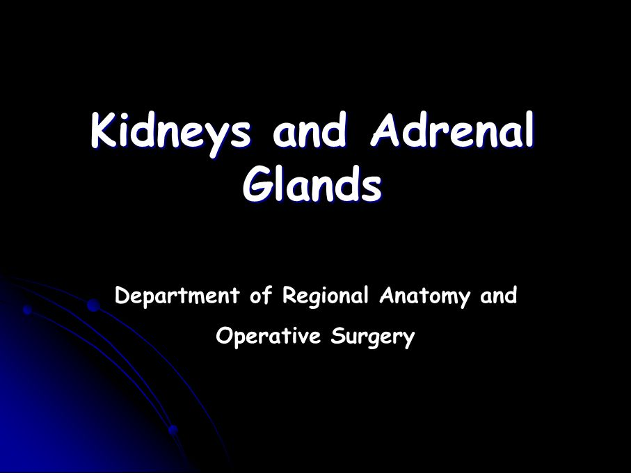 Kidneys and Adrenal Glands
