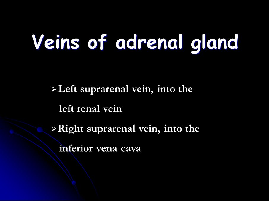 Veins of adrenal gland Left suprarenal vein, into the left renal vein