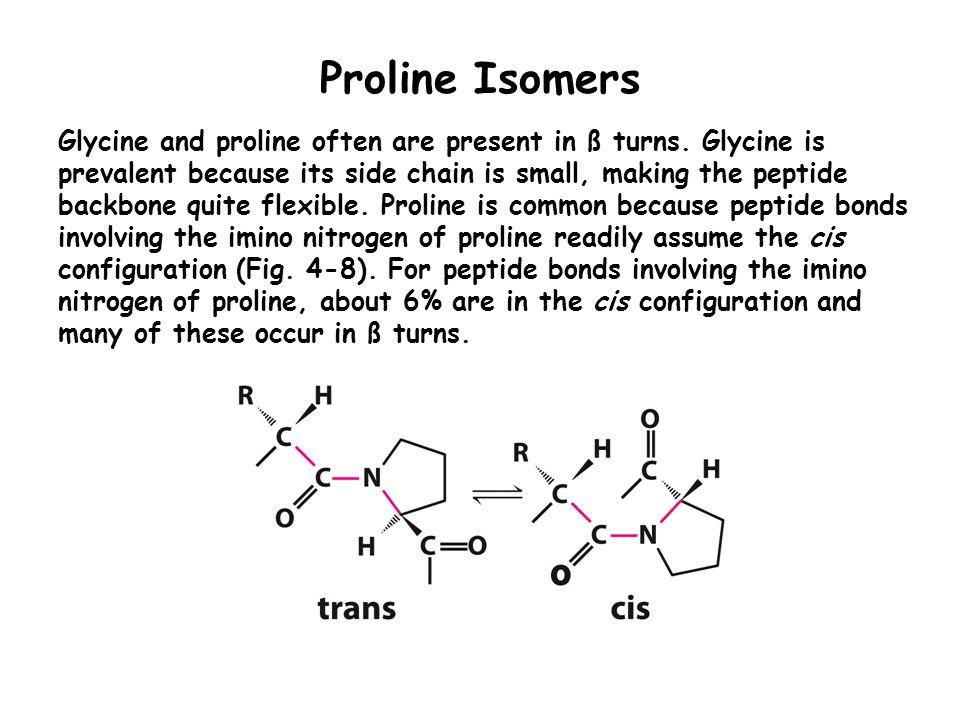 Proline Isomers