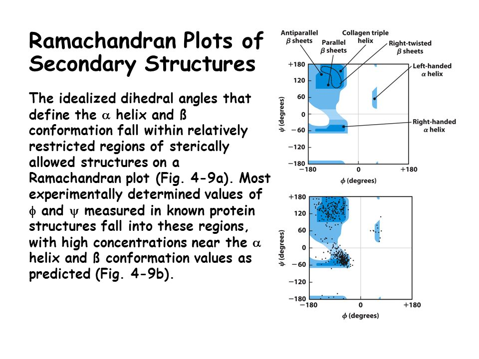 Ramachandran Plots of Secondary Structures